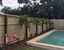 Pool compliant timber fence Southport Queensland