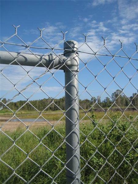 Chainwire Galvanised Fence