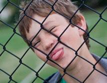 Chainwire PVC School Fence