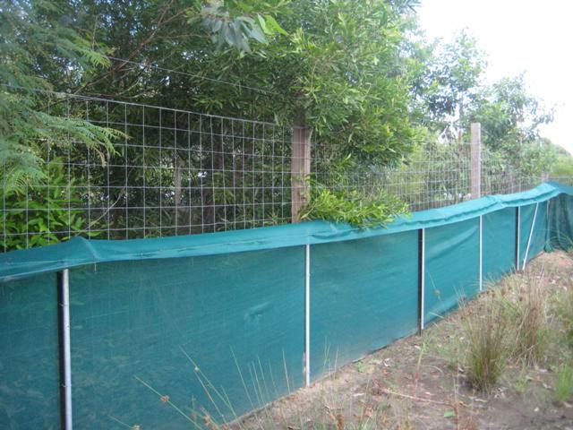 Frog Fence