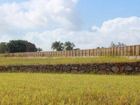 Acoustic boundary fence Cutters Ridge Bli Bli